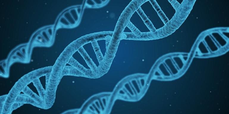 cancer-genetics