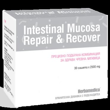 Интестинал мукоза рипейр / Intestinal Mucosa Repair