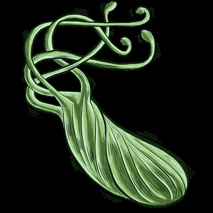 Хеликобактер пилори има спираловидна форма с камшичета.