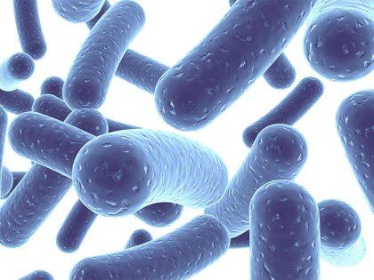 Пробиотици за деца – защо, как и колко се препоръчват