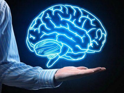 Как да укрепите функциите на вашата памет за по-добър фокус и тонус